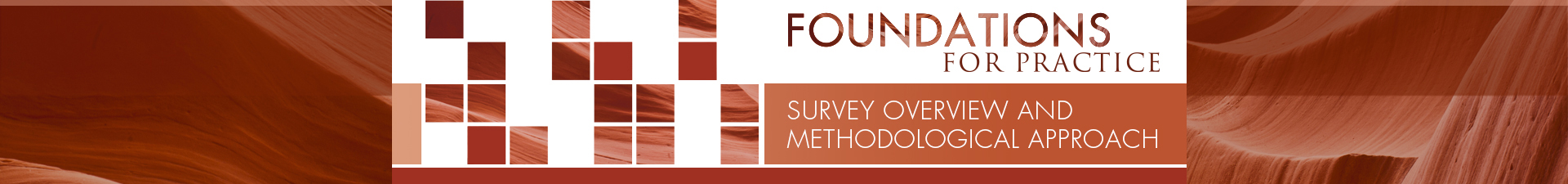 Survey Overview and Methodological Approach